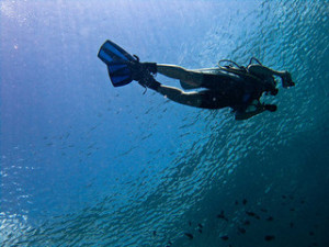 scuba diving helps us stay fit